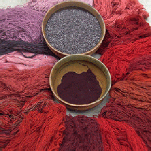 Cochineal Workshop