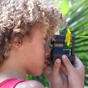 flower microscope observing