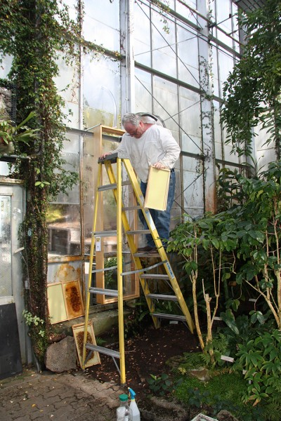 Steve Gentry installing beehive 2-20-2009 1-13-19 PM