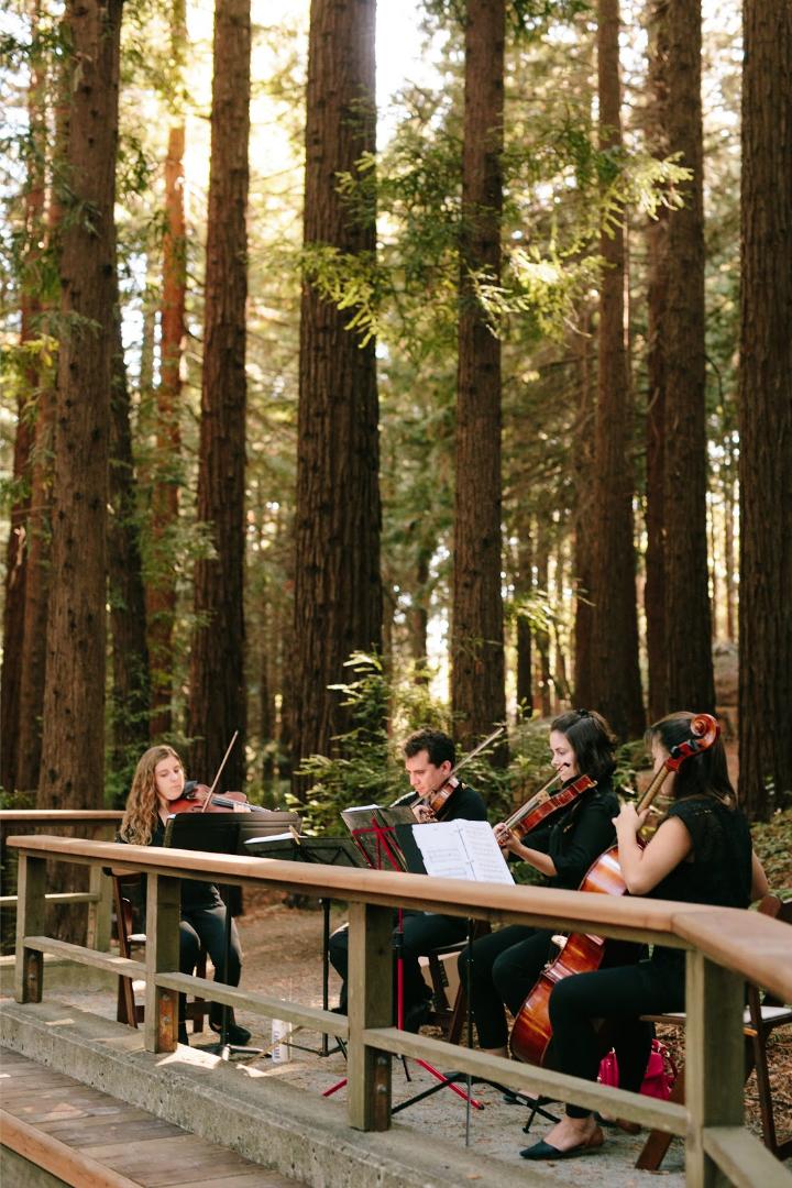 Rentals Redwood Grove Uc Botanical Garden