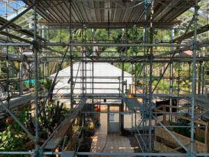Picture from the Tropical House interior with scaffolding during complete glass removal.